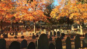fall-reading-1